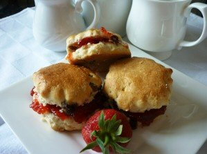 Fruit Scones Using the Halogen Oven